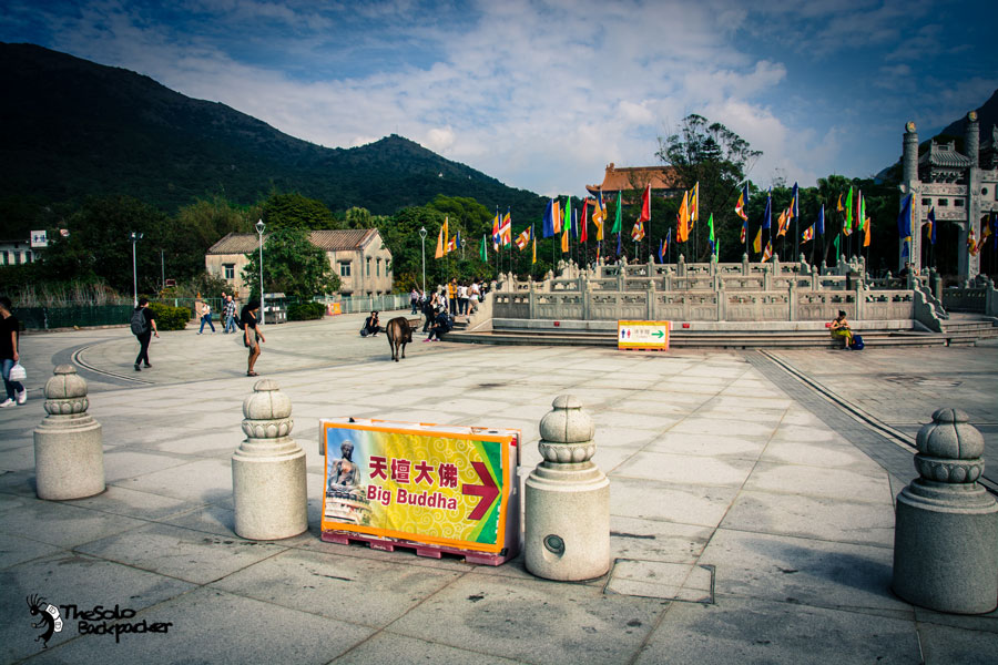 big-buddha-area-thesolobackpaker-world